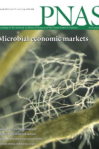 Evolution of microbial markets
